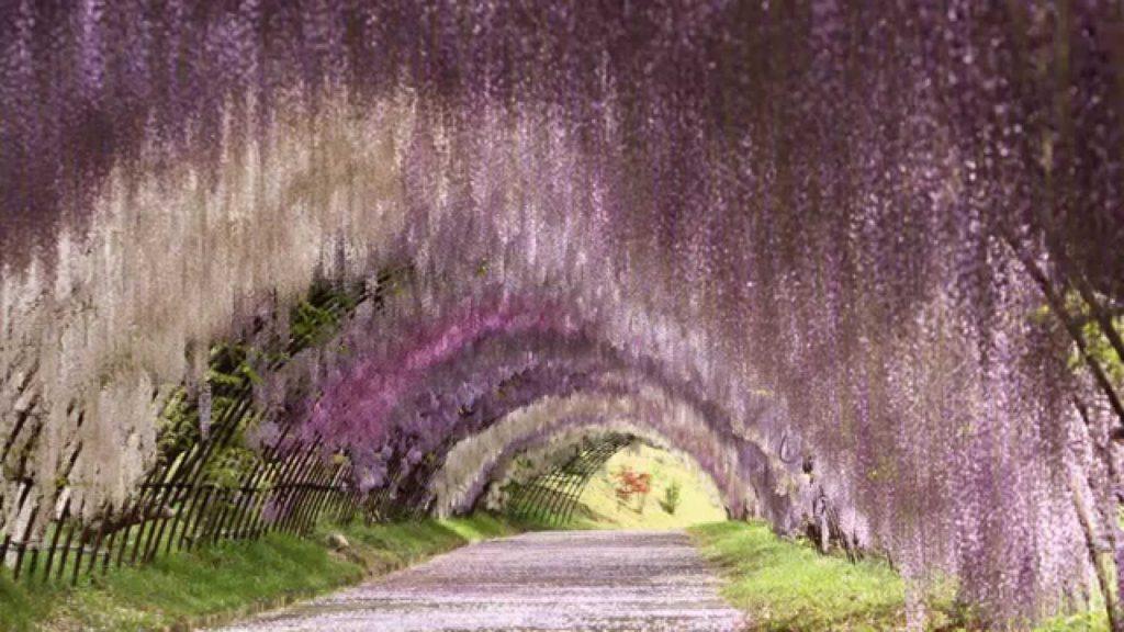 福岡県おすすめ観光スポット人気ランキング厳選10選 迷ったらココへ