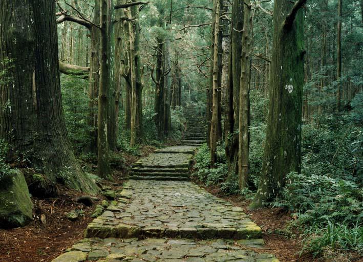 和歌山県おすすめ観光スポット人気ランキング厳選10選 白浜温泉や熊野古道以外にも!