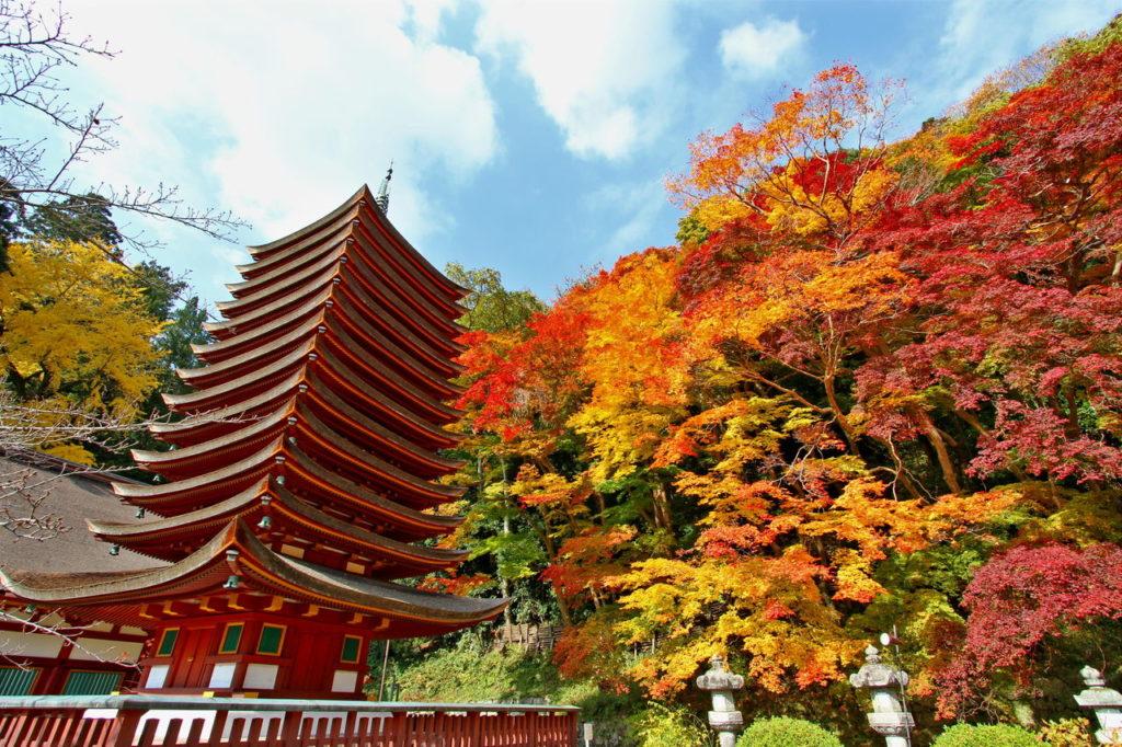 奈良のパワースポット神社 おすすめランキング厳選10