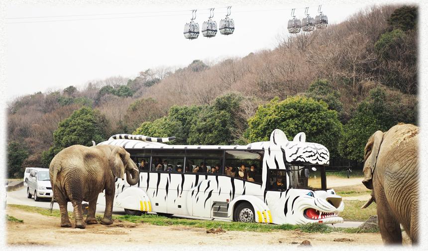 bus_main_img_01
