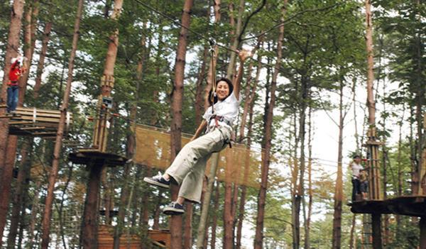 九州おすすめアスレチック 人気ランキング厳選6 大人も楽しめる!