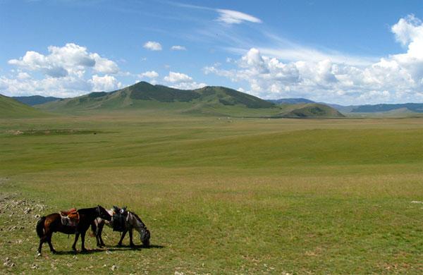 mongol_kiji048_01