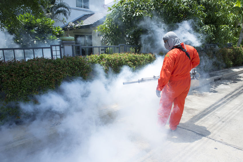 40911501 - workers are fogging for dengue control.