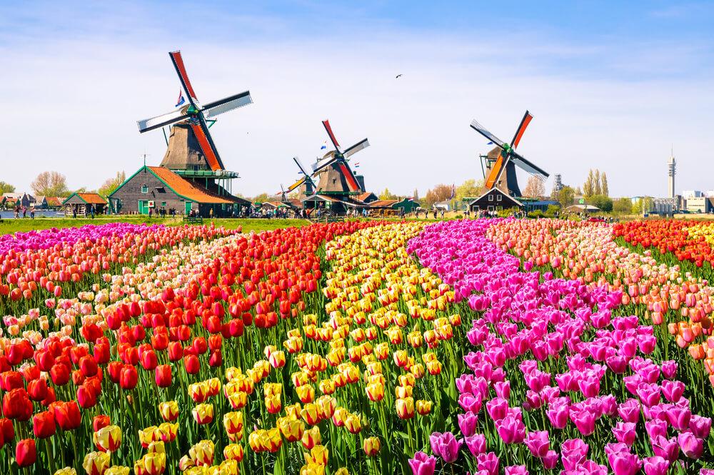 オランダ旅行は実は危険?治安と最低、注意しておきたい9つのこと
