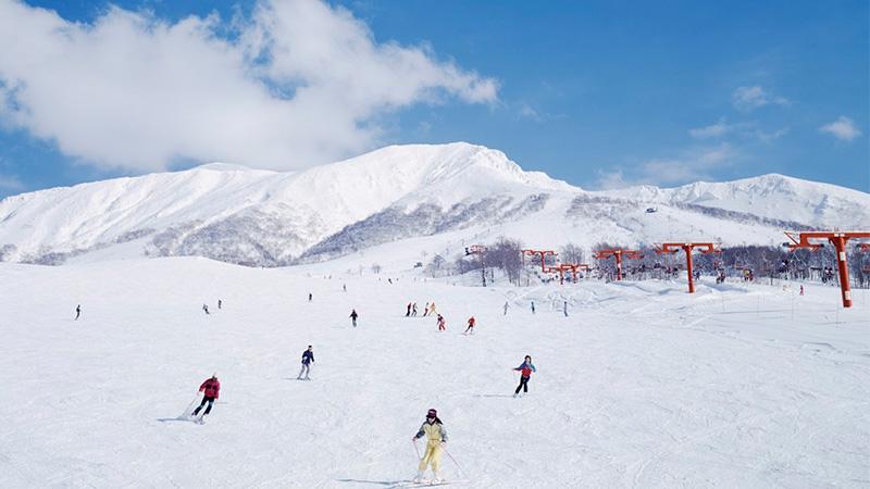 北海道のおすすめスノボー・スキー場!人気ランキングBEST10