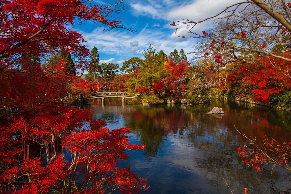 群馬県の温泉宿 人気の旅館ランキング厳選11