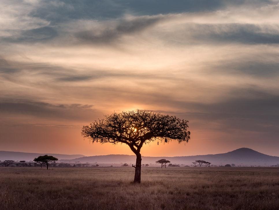 ソマリア旅行は実は危険?治安と最低、注意しておきたい9つのこと