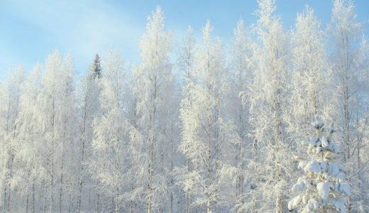 【2020年】フィンランドの治安情勢まとめ!旅行者が注意すべき危険ポイント